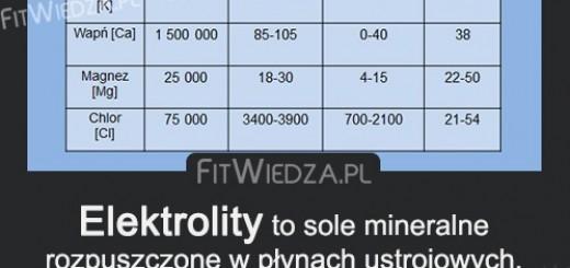 elektrolity1