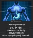 Żołądek potrzebuje ok. 14 dni na...