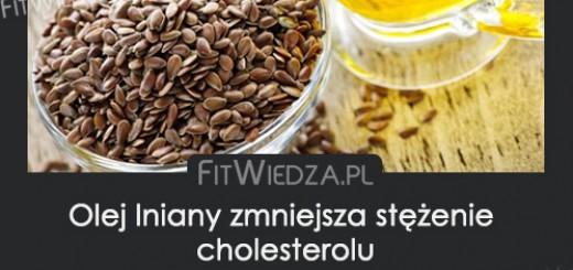 olejlnianynacholesterol