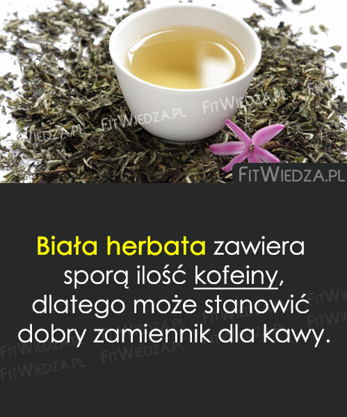 bherbata