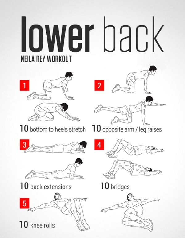 lowerbackworkout