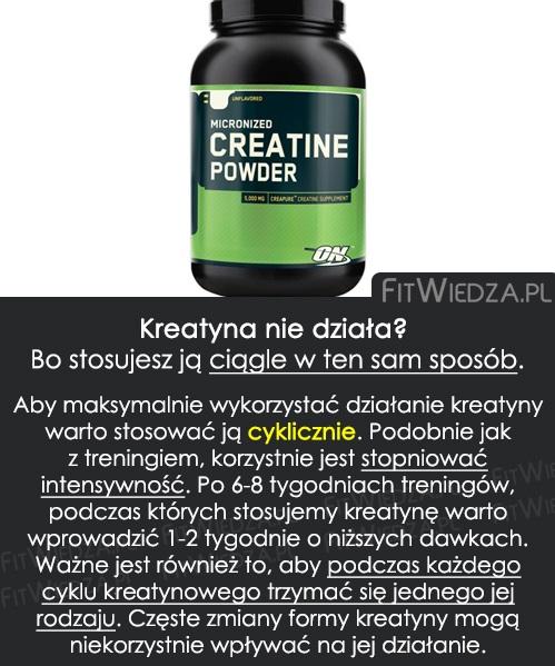 kreatyna