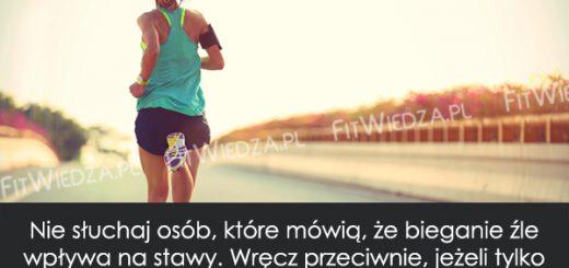 bieganiestawy1