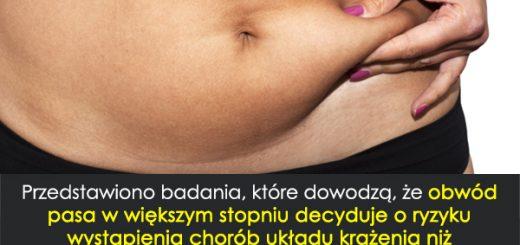 obwodpasa1