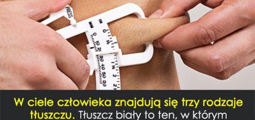 tluszcz1